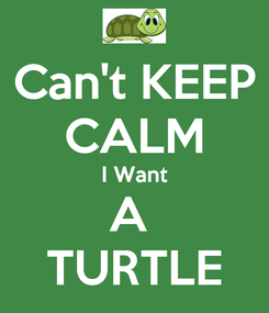Poster: Can't KEEP CALM I Want A  TURTLE