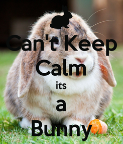 Poster: Can't Keep Calm its a Bunny