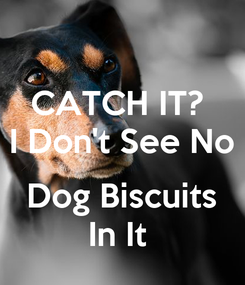 Poster: CATCH IT?  I Don't See No  Dog Biscuits In It