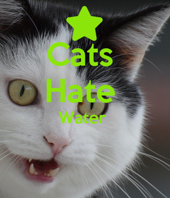 Poster: Cats  Hate  Water