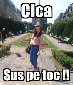 Poster: Cica Sus pe toc !!