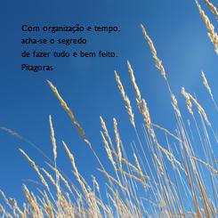 Poster: Com organização e tempo,  acha-se o segredo  de fazer tudo e bem feito. Pitagoras