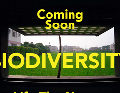 Poster: Coming Soon BIODIVERSITY Life The Nature