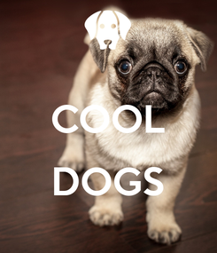 Poster:  COOL  DOGS