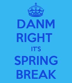 Poster: DANM RIGHT  IT'S SPRING BREAK