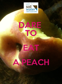 Poster: DARE  TO EAT A PEACH