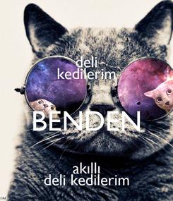 Poster: deli kedilerim BENDEN akıllı deli kedilerim