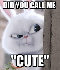 "Poster: DID YOU CALL ME  ""CUTE"""