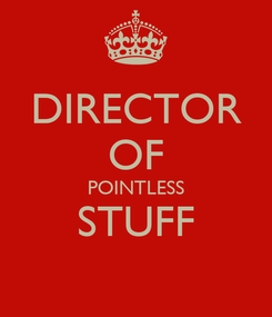 Poster: DIRECTOR OF POINTLESS STUFF