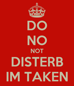 Poster: DO NO NOT DISTERB IM TAKEN