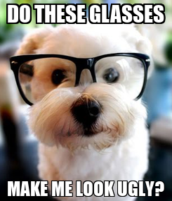 Poster: DO THESE GLASSES MAKE ME LOOK UGLY?