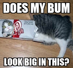 Poster: DOES MY BUM LOOK BIG IN THIS?
