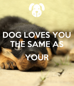 Poster: DOG LOVES YOU THE SAME AS  YOUR