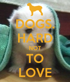 Poster: DOGS. HARD NOT TO LOVE