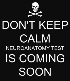 Poster: DON'T KEEP CALM NEUROANATOMY TEST IS COMING SOON