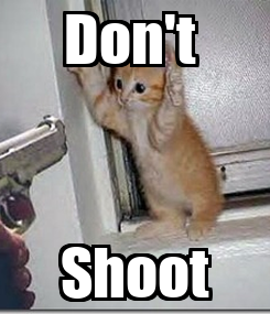 Poster: Don't  Shoot
