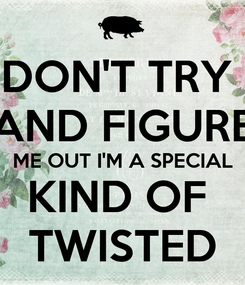 Poster: DON'T TRY  AND FIGURE ME OUT I'M A SPECIAL KIND OF  TWISTED