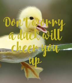Poster: Don't worry  a duck will cheer you up