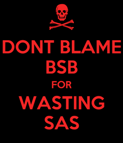 Poster: DONT BLAME BSB FOR WASTING SAS