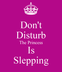 Poster: Don't Disturb The Princess Is Slepping