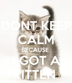 Poster: DONT KEEP CALM BECAUSE  I GOT A KITTEN