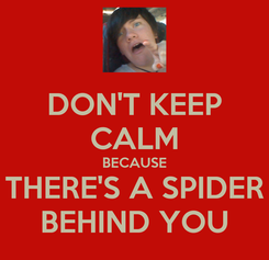 Poster: DON'T KEEP CALM BECAUSE THERE'S A SPIDER BEHIND YOU