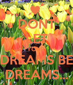 Poster: DONT LET YOUR  DREAMS BE DREAMS...
