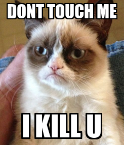 Poster: DONT TOUCH ME I KILL U