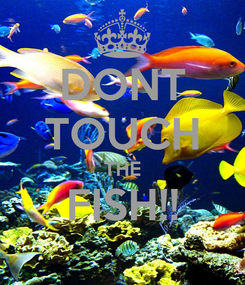 Poster: DONT TOUCH THE FISH!!
