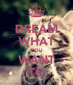 Poster: DREAM WHAT YOU WANT TO