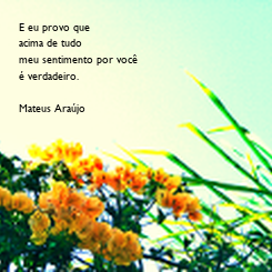 Poster: E eu provo que acima de tudo meu sentimento por você é verdadeiro.  Mateus Araújo