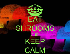 Poster: EAT SHROOMS AND KEEP CALM
