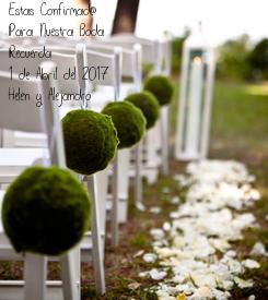 Poster: Estas Confirmad@  Para Nuestra Boda Recuerda 1 de Abril del 2017 Helen y Alejandro