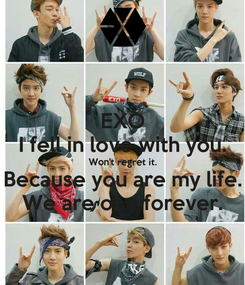 Poster: EXO I fell in love with you. Won't regret it. Because you are my life. We are one forever.