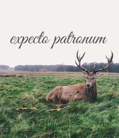 Poster: expecto patronum