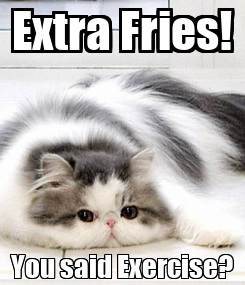 Poster: Extra Fries! You said Exercise?