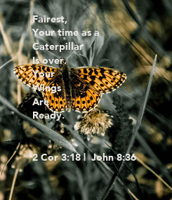 Poster: Fairest,