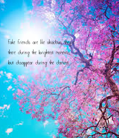 Poster:    Fake friends are like shadows, they're  there during the brightest moments, but disappear during the darkest.
