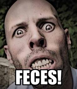 Poster:  FECES!