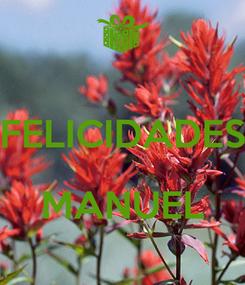 Poster:  FELICIDADES  MANUEL