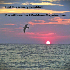 Poster: Find this scenery beautiful? 