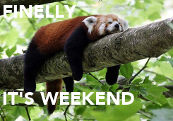 Poster: FINELLY    IT'S WEEKEND