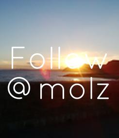 Poster: Follow @molz