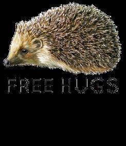 Poster:  FREE HUGS