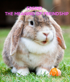 Poster:                    FREIND THE MEANING OF FREINDSHIP THE WORLD THINKS THAT IT KNOWS BUT