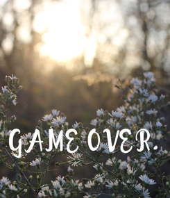 Poster: GAME OVER.