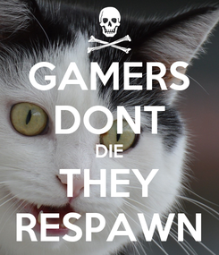 Poster: GAMERS DONT DIE THEY RESPAWN