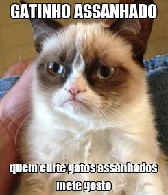 Poster: GATINHO ASSANHADO quem curte gatos assanhados mete gosto