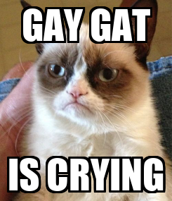 Poster: GAY GAT IS CRYING