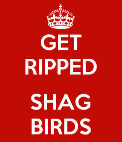 Poster: GET RIPPED  SHAG BIRDS